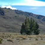Landschaft bei esquel 3