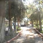 PIC_3383
