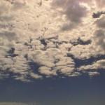 PIC_3611