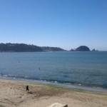 Playa dichato